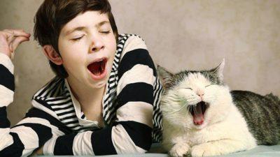 зевать полезно